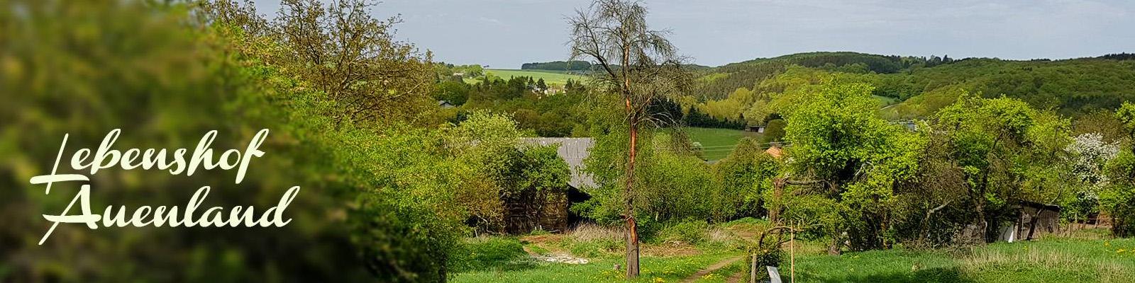 bannerlebenshof